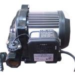 Máy bơm cảm ứng từ Hanil cho gia đình – HB 305A-5